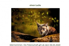 Wildpark Tambach Patenschaft