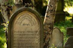 Jüd. Friedhof Burgkunstadt - (c) Mario Kern